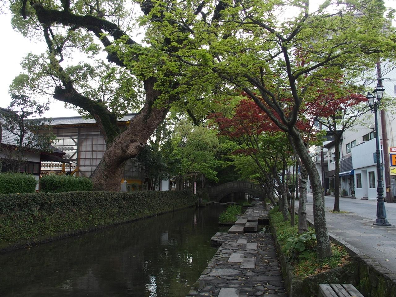 松原神社北側の堀