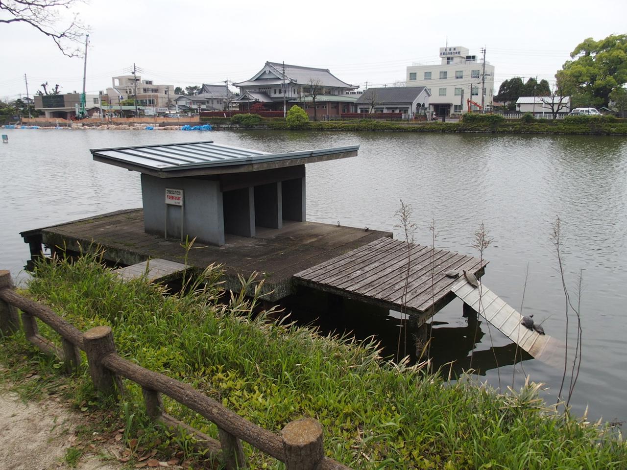 佐賀城の亀