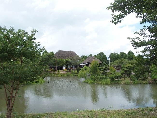 【佐賀 横武城跡】中世の城郭好きなら絶対に感動できる城跡!神埼市クリーク公園