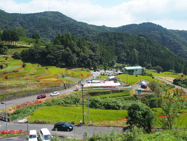 江里山の棚田4