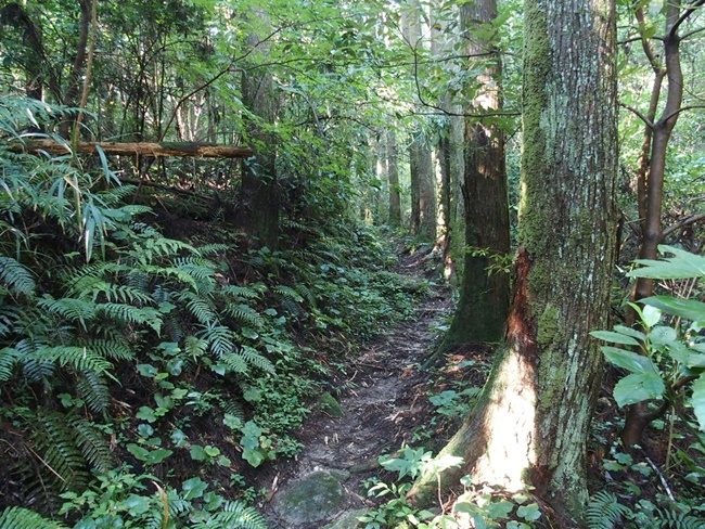 登山道入り口