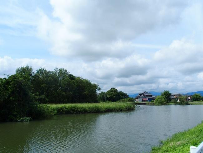 姉川城東側堀