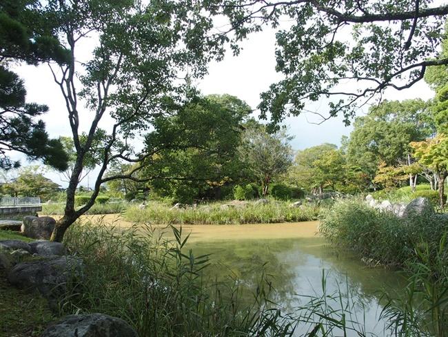 蓮池城浮島2