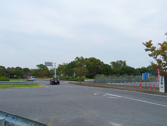 佐賀空港コスモス園への道