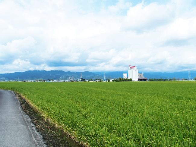 姉川城から勢福寺城方面