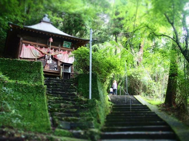 本堂へと続く階段