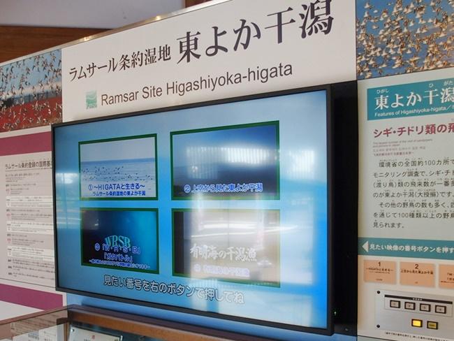 東よか干潟ガイダンスルームモニター