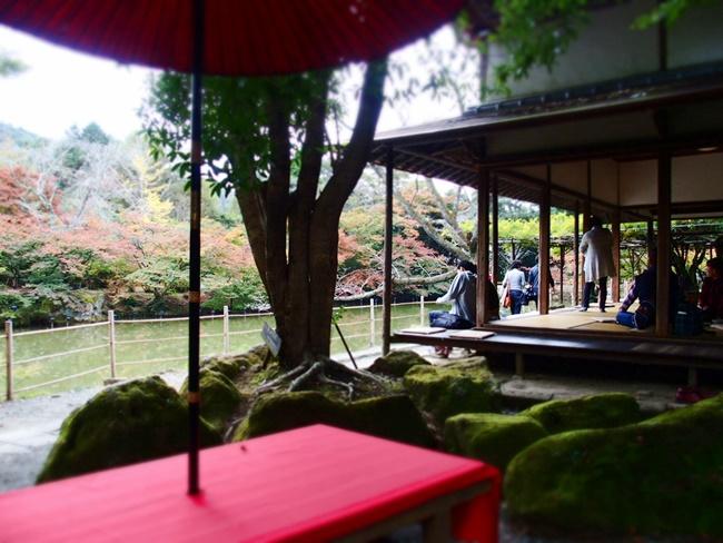 「御船山楽園の紅葉」美しすぎる日本庭園!一生思い出に残る景観。佐賀武雄市の日本庭園