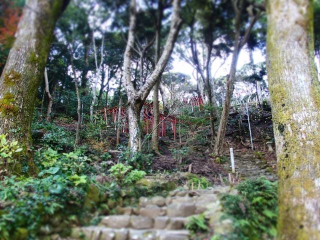 祐徳稲荷神社奥の院参道9