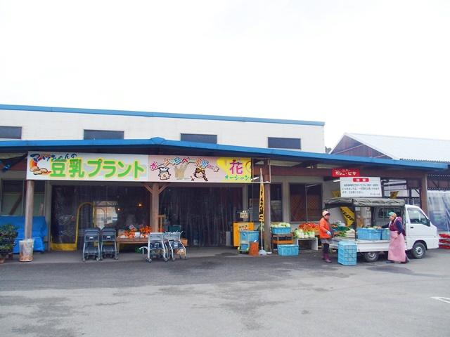 マッちゃん仮2