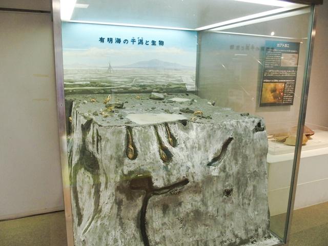 佐賀県立博物館5