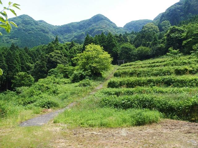 岳神社10