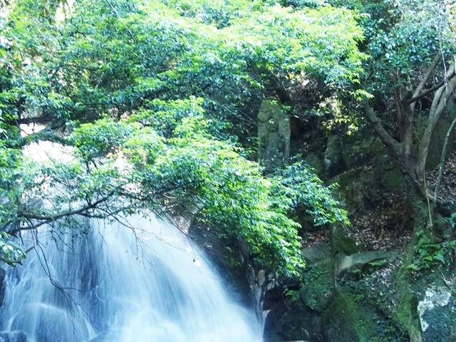 御手水の滝27