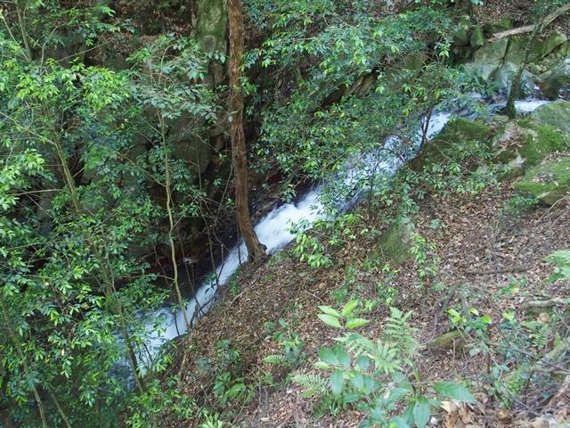 御手水の滝15