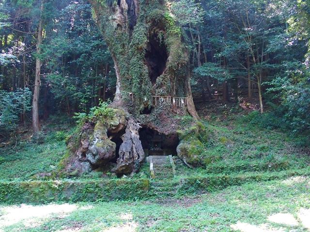 武雄神社18