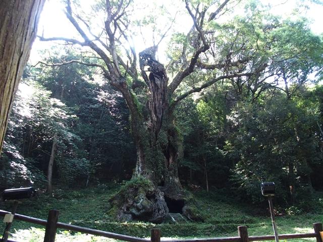 武雄神社16
