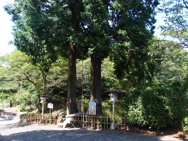 武雄神社23