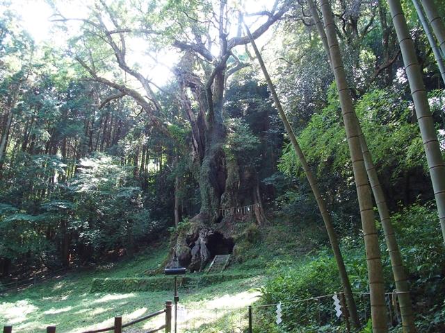 武雄神社20