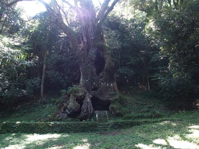武雄神社17