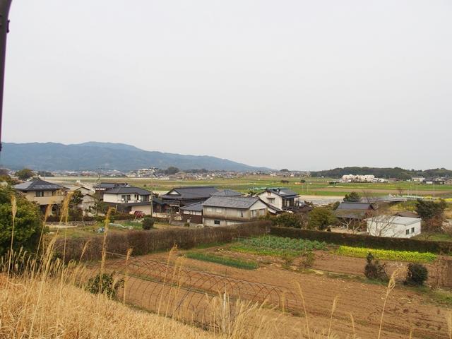 日吉神社7
