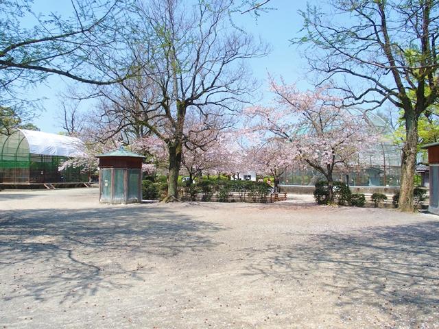 神野公園30