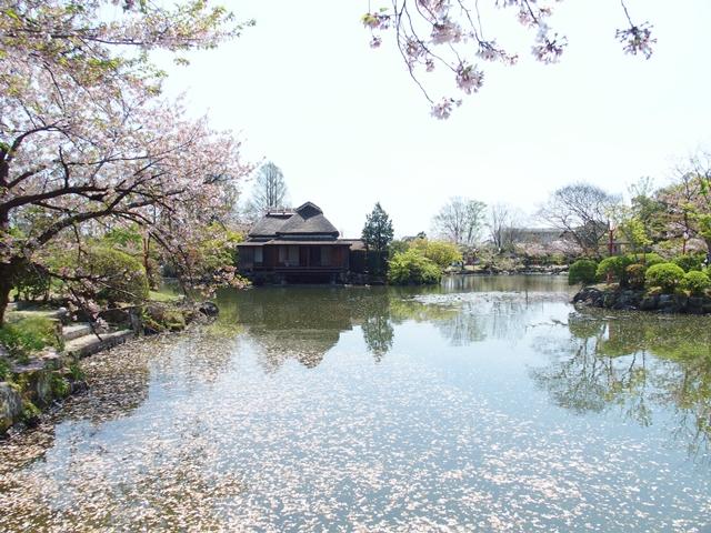 神野公園25