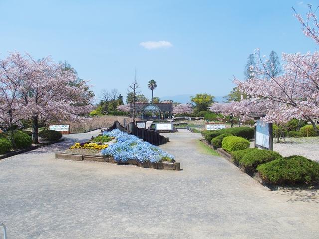 神野公園1