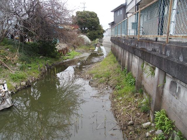 鍋島若宮神社16