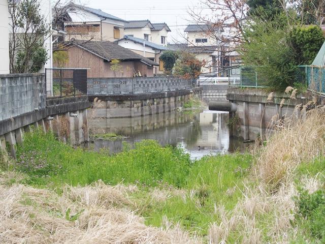 鍋島若宮神社17