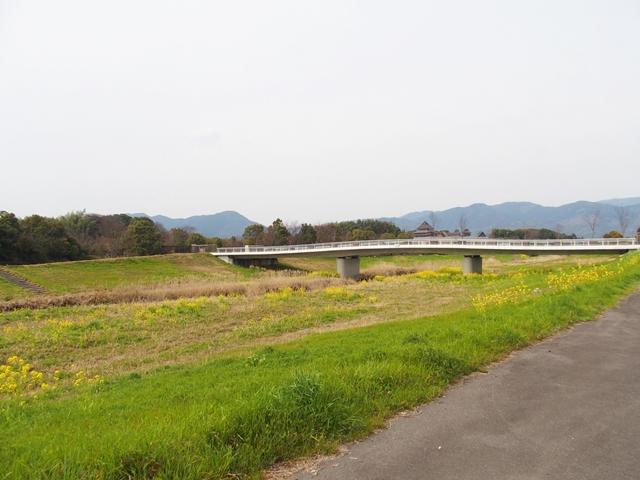 田手川戦場跡7