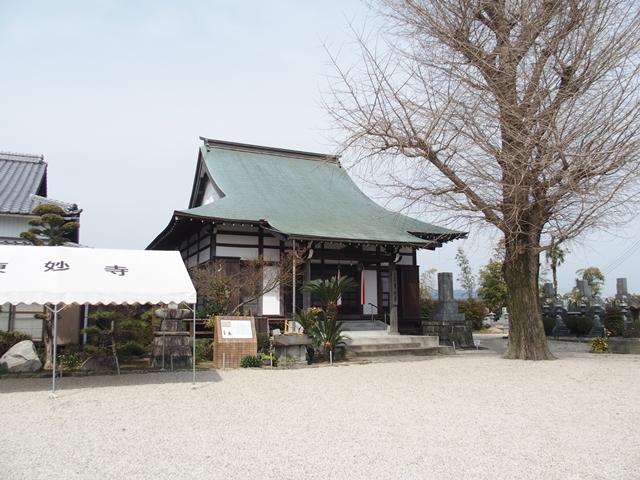田手川戦場跡4