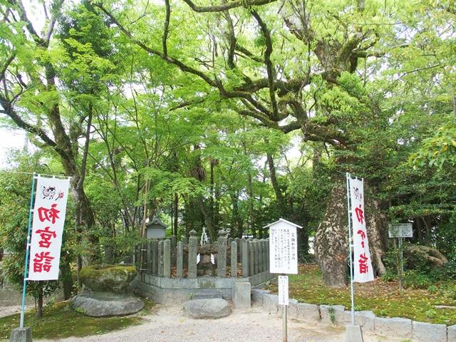 櫛田宮30