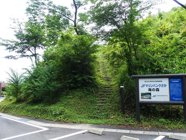 森林学習館3